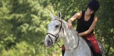 Propriétaire, votre cheval est-il bien assuré ?