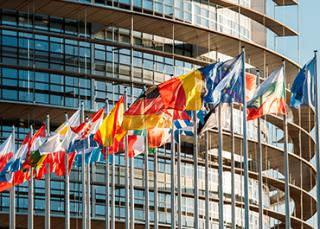 TPE : et si vous sollicitiez l'aide de l'Europe ?