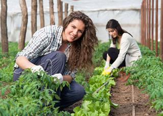 vente-directe-agriculteurs